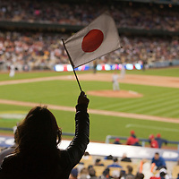 22 March 2009: A fan of team Japan holds a flag during the last inning during the 2009 World Baseball Classic semifinal game at Dodger Stadium in Los Angeles, California, USA. Japan wins 9-4 over Team USA.