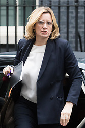 Downing Street, London, January 31 2017. Home Secretary Amber Rudd arrives at the weekly meeting of the UK cabinet.
