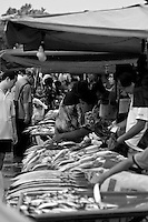 All types of fish are on sale at the waterfront market in kota kinabalu.
