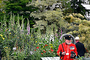 © Licensed to London News Pictures. 20/05/2013. London, UK A Chelsea Pensioner at the show. Press day at Chelsea Flower Show 2013. The centenary edition of the show attracts large number of visitors and is already sold out before opening day. Photo credit : Stephen Simpson/LNP