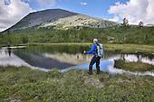 Sweden - Trekking in Sonfjellet