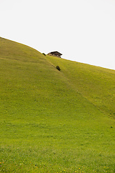 Low angle view of house on a hilltop, Austrian alps, Carinthia, Austria