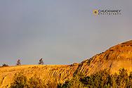 Mountain biking on the Maah Daah Hey Trail  near Coal Creek in the Little Missouri National Grasslands, North Dakota, USA MR