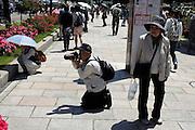people walking and taking pictures in rose garden Japan Yokozuka