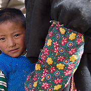 Portraits of nomad people that live in areas near Lake Namtso. Altitudes above 17,000 feet. Tibet. Asia.