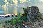 Canoes on Lake Crescent at Olympic National Park in Washington State