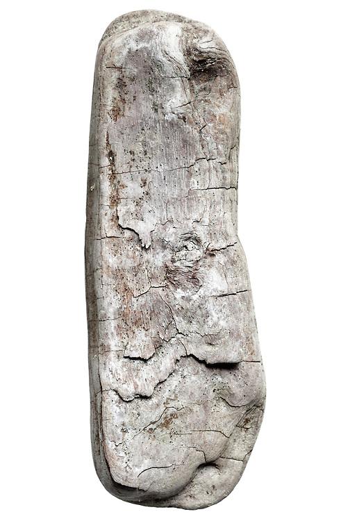 wood fragment form natural smoothed