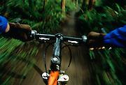 Image of mountain bike handlebars in motion, Kirkland, Washington, Pacific Northwest by Andrea Wells