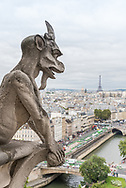 Gargoyle at the top of Notre Dame cathedral in Paris, France.