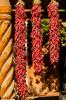 Ristras (drying red chile pepper pods), El Pinto Restaurant and Cantina, Albuquerque, New Mexico USA