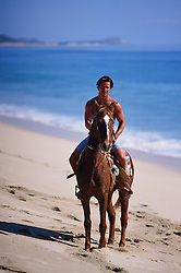 handsome man on a horse at the beach in Cabo San Lucas, Mexico