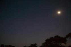 Moon Early Morning Before Hot Air Ballooning Over Bagan