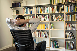 Rear view of a mature businessman watching books in an office, Bavaria, Germany