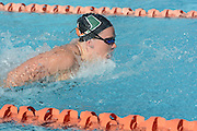 2014 Miami Hurricanes Swimming & Diving Action Photo Day