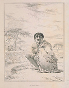 A Korah girl T'Kaness, the daughter of T'Goosht Kaba, A wealthy chief of the Korah Hottentots. from the book Sketches representing the native tribes, animals, and scenery of southern Africa : from drawings made by the late Mr. Samuel Daniell. by Daniell, Samuel, 1775-1811; Daniell, William, 1769-1837; Barrow, John, Sir, 1764-1848; Somerville, William, 1771-1860; Printed by Richard and Arthur Taylor : Published by William Daniell, and William Wood, London, 1820