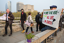London, UK. 17th April 2019. Passersby during rush hour glance at a banner displayed on Waterloo bridge by a climate change activist from Extinction Rebellion during the third day of International Rebellion activities.