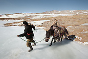 Before a horse journey, horses are brought to a nearby icy river for drinking..At the Andemin camp...Trekking through the high altitude plateau of the Little Pamir mountains, where the Afghan Kyrgyz community live all year, on the borders of China, Tajikistan and Pakistan.
