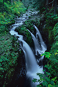 View looking upstream at Sol Duc Falls in olympic National Park