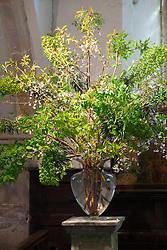 Church flower arrangement. Altar showing foliage