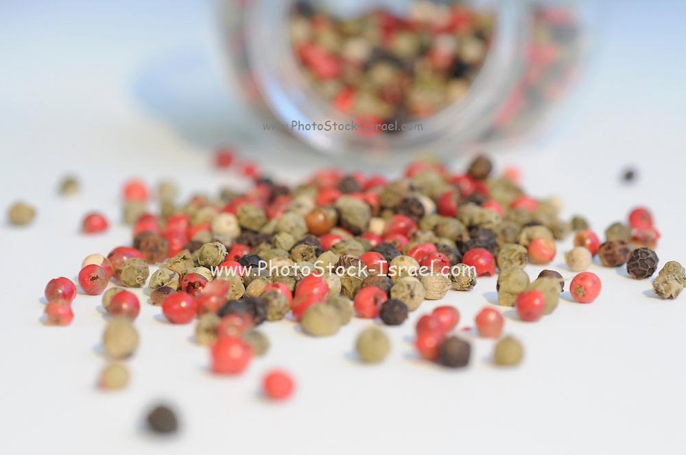 Mixed Pepper Corns using selective focus