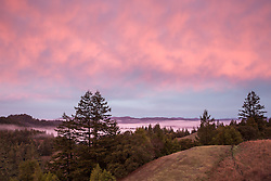 Sunrise in the Coastal Range of Northern California in Mendocino County between the town of Willits and Fort Bragg.