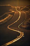 A motorcyclist rides at dusk on Mt. Tamalpais in Mt. Tamalpais State Park in Marin County, California, USA.