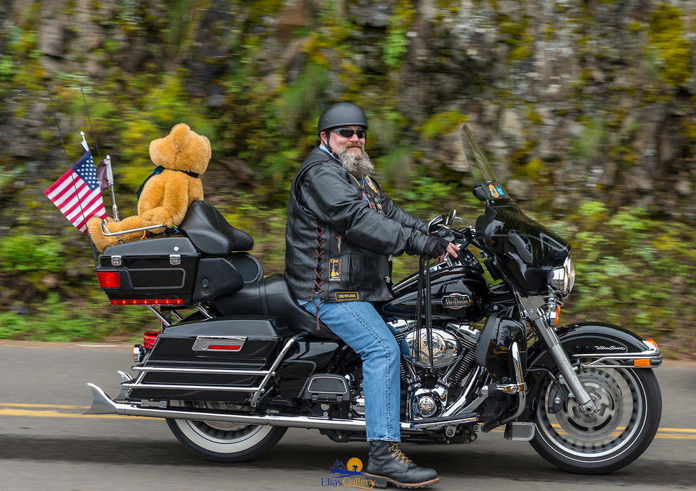 Guy on Harley Davidson with a Teddy Bear on the back.