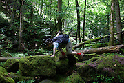 Wearing a peaked cap and small rucksack, a young adventurer, clambers over rocks in the ancient forest of Monbachtal Bach in Germany's Black Forest. Stretching to climb the rock, the lad of 10 uses his hand and walking stick to balance as he puts a boot higher to gain a sure footing. There is ample covering of moss and lichen on the primeval landscape making it hazardous to conquer but the boy stumbles over the terrain and continues his walk through this beautiful wilderness. The boy is alone in the picture though accompanied by his family but he seems to mange on his own, capable of finding his own limits of endurance and confidence. Geologically, the Black Forest consists of a cover of sandstone on top of a core of gneiss. During the last glacial period, the Würm glaciation, the Black Forest was covered by glaciers.