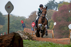 Vogg Felix, SUI, Mathurin vd Vogelzang<br /> World Championship Young Eventing Horses<br /> Mondial du Lion - Le Lion d'Angers 2016<br /> © Hippo Foto - Dirk Caremans<br /> 22/10/2016