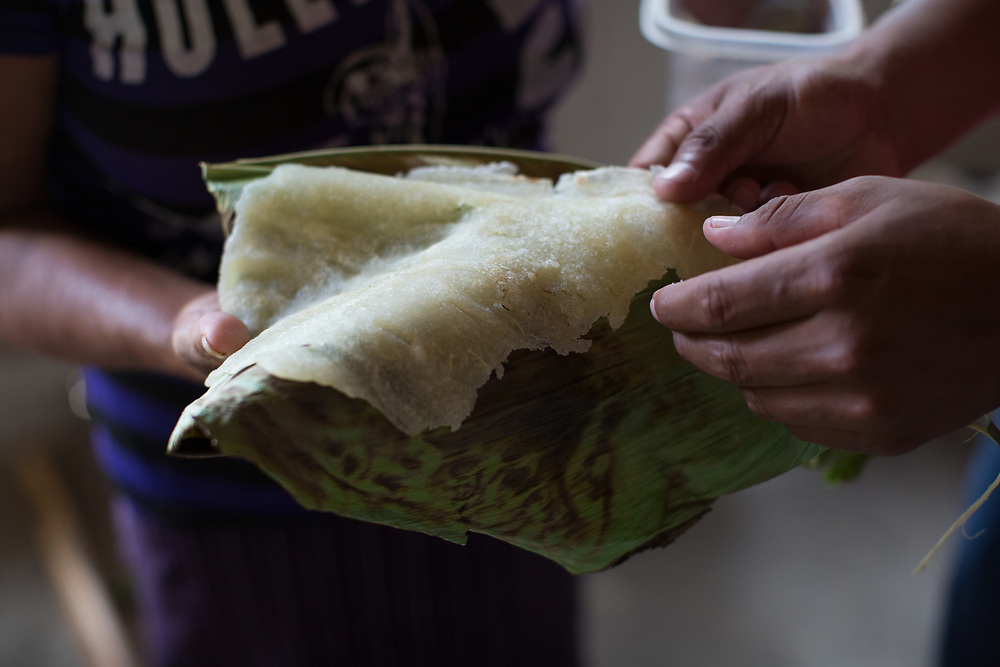 Sasal, a traditional food of the Pech indigenous people in Honduras, made from cassava.