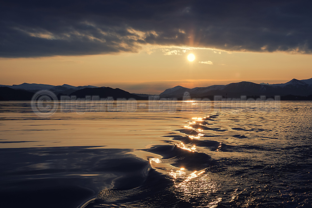 Golden sea at Herøyfjord | Gyllen sjø i Herøyfjord.