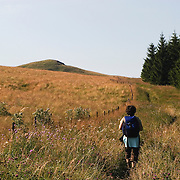 Walker with backpack in field with flowers and trees. Auvergne, France