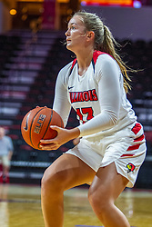 NORMAL, IL - November 05: Kayel Newland during a college women's basketball game between the ISU Redbirds and the Truman State Bulldogs on November 05 2019 at Redbird Arena in Normal, IL. (Photo by Alan Look)