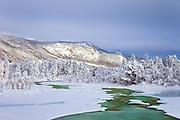 River in Winterlandscape, Dagali, Norway | Elv i vinterlandskap, Dagali, Norge
