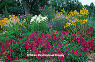 63821-08819 Wave Petunias, Black-eyed Susans & Garden Phlox in flower garden, Marion Co., IL