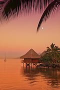 Sunset on Moorea Island Tahiti