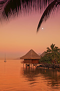 Sunset on Moorea Island Tahiti