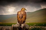 The Eagle Hunters of Mongolia