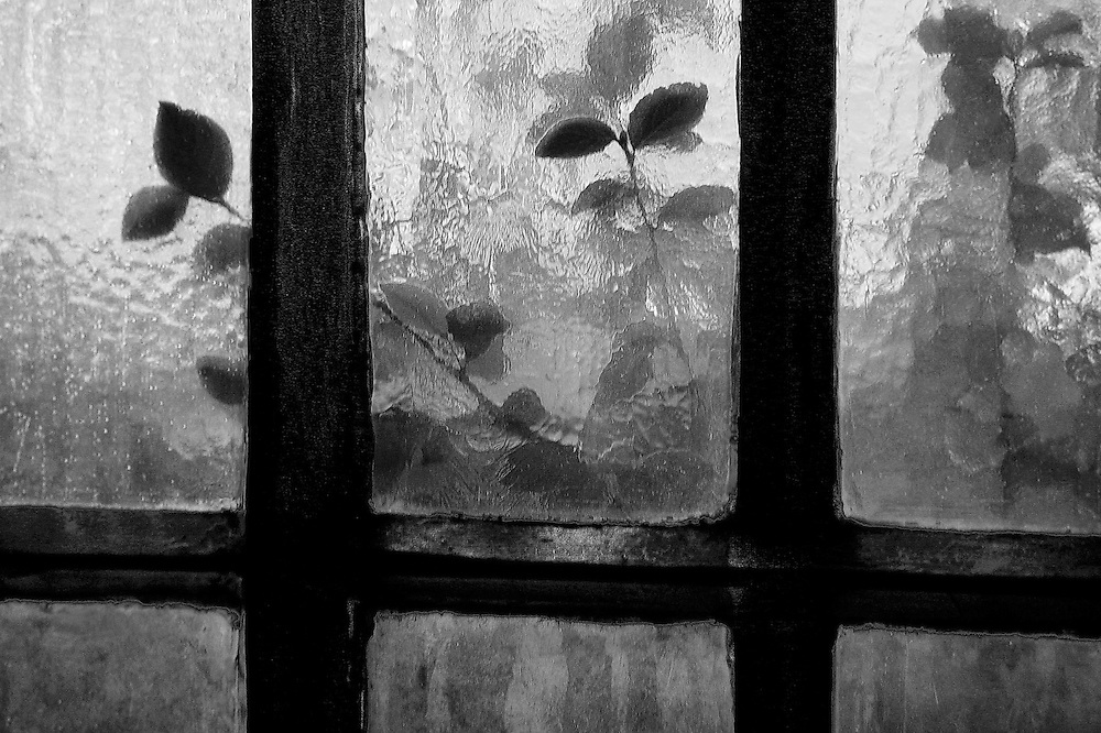 Church Window, Berkeley, CA