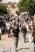 Shoppers in pedestrianised shopping street in the town centre, Lewes, East Sussex, England