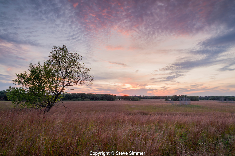 This restored prairie in Wild River State Park offers a beautiful sunset view. With native grasses up to six feet tall, one can get a sense of how the prairie appeared to the first white settlers.  Soon after sunset, rays from below the horizon often light up the underside of higher clouds.