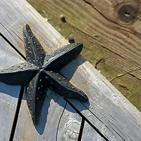 As I walked on the new walkway towards the Whale Sculpture in Juneau, I noticed the starfish which were at the edge of the steps of the seating area along the way. With the sunlight casting a shadow I spent a little time photographing these elements more so designed to limit skateboarding tricks on the wood. Standing above the starfish I was able to pick an angle which brought the lines through the image and also showed the face there was a step below.