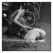 Black and white picture of a man making hair dressing to his dog.