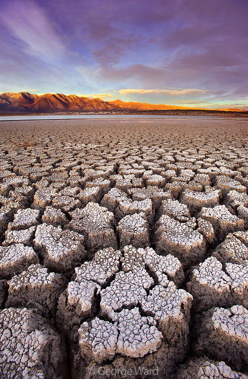 Cracked Alkali at Sunset, BLM Lands, Mono County, Caifornia