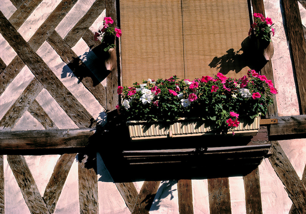 A modern flowerbox with petunias contrasts with an old half-timbered wall in Honfleur on the Normandy coat in France.