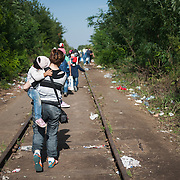 Monday, 14 September 2015. Aysha carries Bisan on the long march from Horgos in Serbia to the Hungarian border. There is a constant flow of people walking on the abandoned railway tracks, rushing to get into Hungary before the border closes to undocumented migrants and refugees.