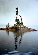 Knarly trees on a rocky island in an alpine lake