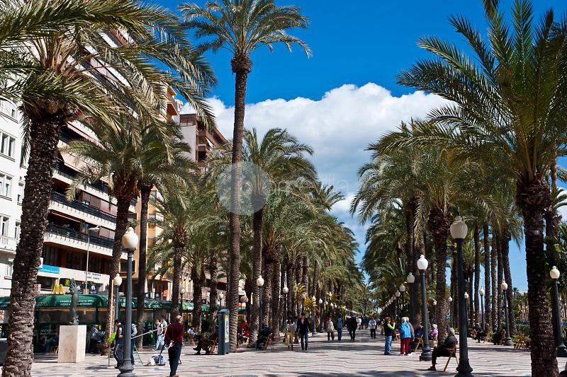 Esplanada de Alicante. ©ANTONIO REAL HURTADO / PILAR REVILLA
