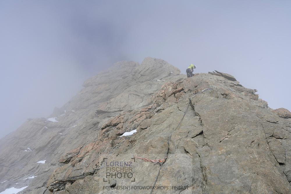 Ein Skibergsteiger kurz vor dem Gipfel des Lauteraarhorns im Nebel, Berner Oberland, Schweiz<br /> <br /> A ski mountaineer just before the summit of Lauteraarhorn in the fog, Bernese Oberland, Switzerland