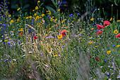 Suffolk, Country Garden